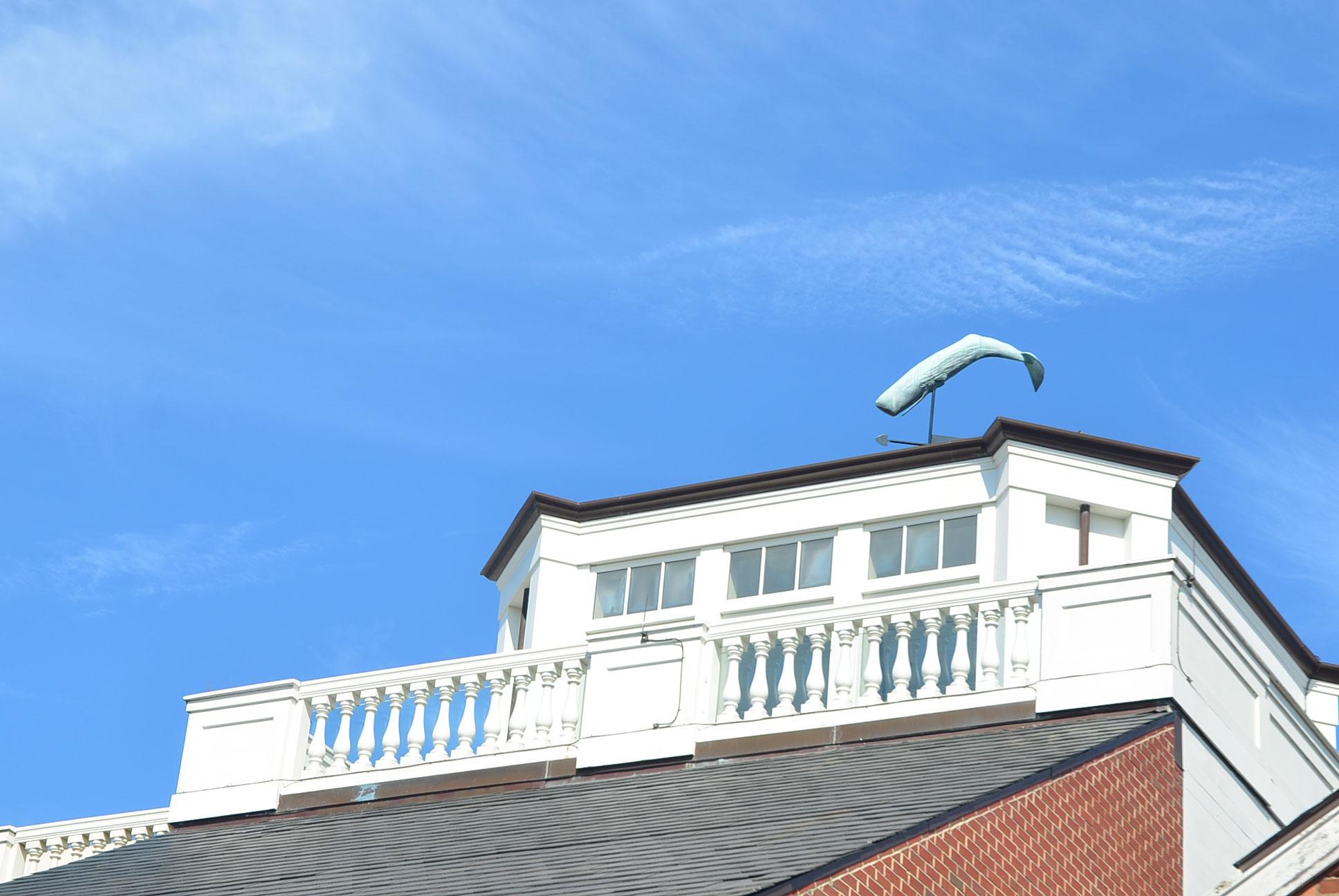 Nantucket Property Caretaking | Wilson Company